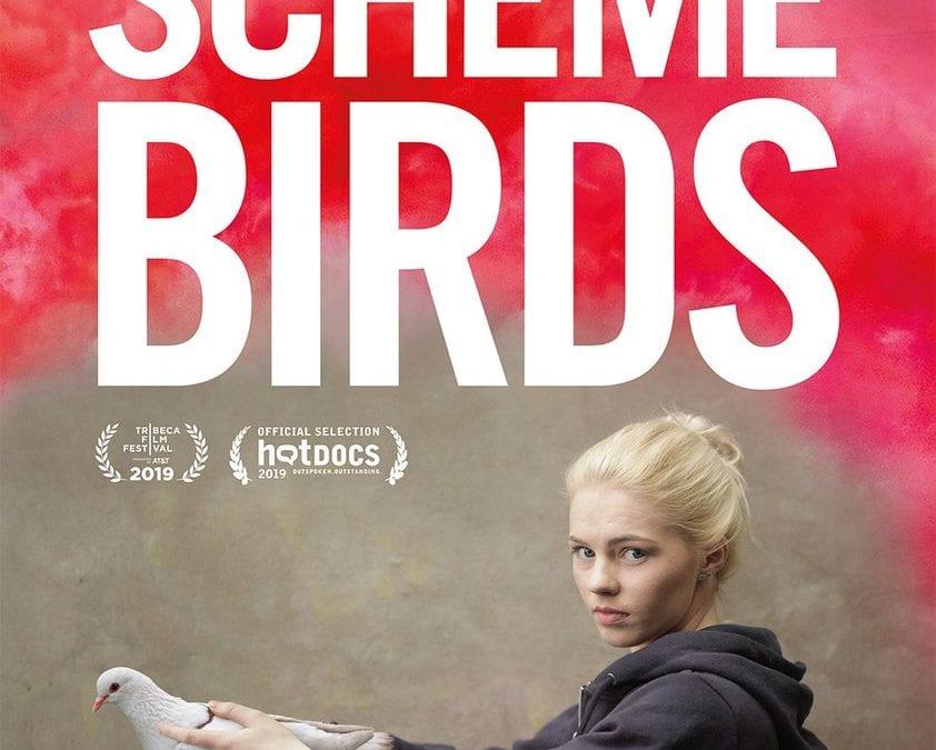 """""""Scheme Birds"""" (Sweden, 2019, 90m)"""